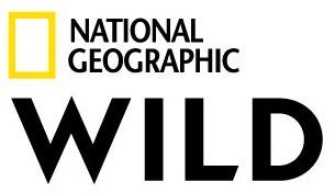 logo Nat Geo Wild HD
